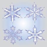 Four white snowflakes Stock Image