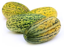 Four whol Mushkmelon Stock Image