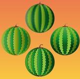 Four whole watermelon on an orange background. Four whole watermelon on a colored background Stock Photo