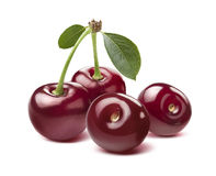 Four wild cherries isolated on white background Royalty Free Stock Image
