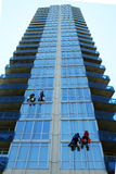 Four window washers on skyscraper. Four window washers hanging from a rope cleaning windows on a skyscraper Royalty Free Stock Photography