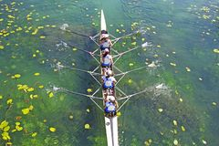 Four Womens rowing team on blue lake. Aerial view royalty free stock photos