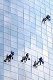 Four workers washing windows Royalty Free Stock Photography
