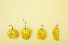 Four yellow bell peppers in a row Royalty Free Stock Photo