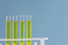 Four yellow fluid test tubes Stock Photo