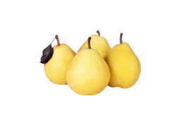Four yellow pears Royalty Free Stock Photo