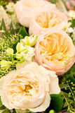 Four yellow rose flowers Stock Photos