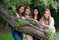 Four young beautiful ladies posing in the park Stock Photography