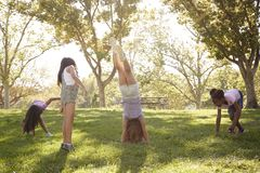 Four young girlfriends doing handstands together in a park stock photo