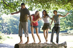Four young people balancing on a log in a park Royalty Free Stock Image