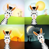 Four zebras in various daytime. Zebra with shape of africa - morning, day, evening and night - bitmap illustration Stock Images