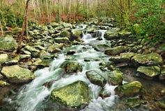 Fourche moyenne la rivière Little Pigeon photos libres de droits