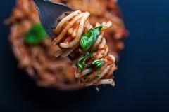 Fourchette complètement des spaghetti italiens tournoyés avec de la sauce bolonaise à viande et du basilic au-dessus d'un plat de images libres de droits