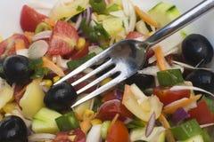 Fourchette en salade photographie stock