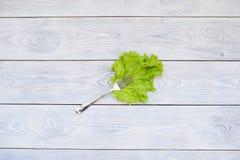 Fourchette sur la feuille de salade verte Photographie stock libre de droits