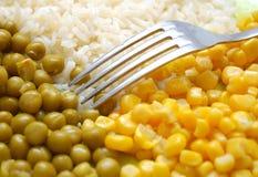 Fourchette sur le paraboloïde avec la nourriture végétarienne Images libres de droits