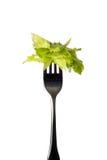 Fourchette verticale avec de la salade Images libres de droits