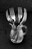 fourchettes Image libre de droits