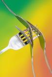 Fourchettes argentées Photos stock