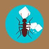 Fourmi avec Sugar Cubes Image libre de droits