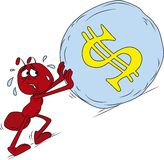 Fourmi de rouge de Sisyphus Image stock