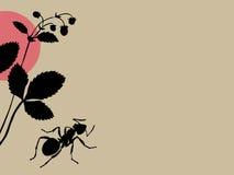 Fourmi noire sur le fond brun illustration libre de droits