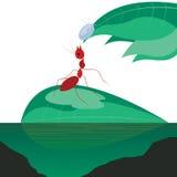 Fourmi sur la feuille verte illustration de vecteur