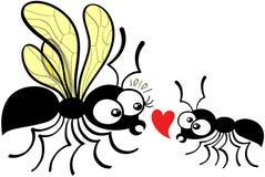 Fourmi timide de travailleur déclarant son amour à la fourmi de reine illustration de vecteur