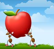 Fourmis de dessin animé portant Apple illustration de vecteur