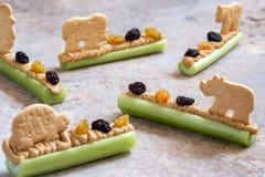 Fourmis sur un casse-croûte de rondin avec le beurre, les raisins secs et le biscuit d'arachide de céleri image libre de droits