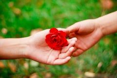 Fournir l'amour Photos libres de droits