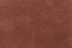 Fourrure animale d'imitation brune mate de tissu Fond en cuir Tissu texturisé Photo stock