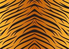 Fourrure d'animaux de tigre de peau de texture Photo libre de droits