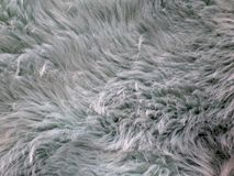 Fourrure d'imitation de couleur bleuâtre avec certains et le fluffiness photos libres de droits
