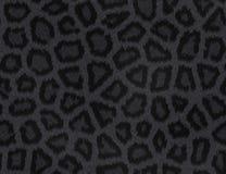 Fourrure de panthère noire illustration stock