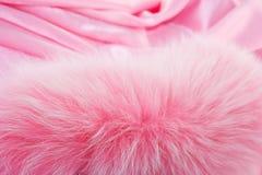 Fourrure de Rose sur un textile de rose Images stock