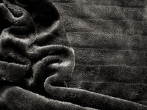 Fourrure noire Images libres de droits