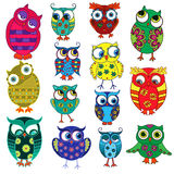 Fourteen cartoon funny owls. Set of fourteen colourful cartoon ornate funny owls with big eyes isolated on the white background, vector illustration Royalty Free Stock Photo