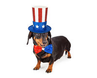 Fourth of July Dachshund Dog. A cute Dachshund breed dog wearing a patriotic red, white and blue hat and tie to celebrate America royalty free stock photos