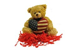 Fourth of July Teddy Bear Stock Photography