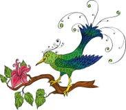 鸟fower 库存照片