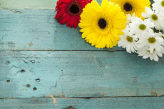 Fower on wooden background Royalty Free Stock Photos