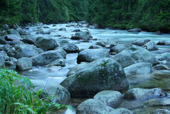 Fowing water of mountain stream Stock Image