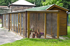 Fowl run to protect chicken for. Big Fowl- or Chicken run to protect chicken for the night and bad weather Royalty Free Stock Photos