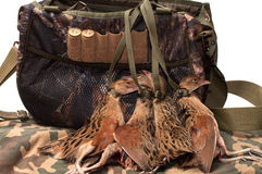 Fowling bag and bird. Stock Photography