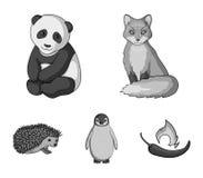 Fox、熊猫、猬、企鹅和其他动物 动物在单色样式传染媒介标志库存设置了汇集象 免版税库存照片