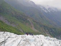 Fox冰川-新西兰 免版税库存照片