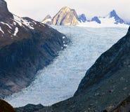 Fox冰川 免版税库存图片
