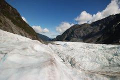 Fox冰川 库存照片
