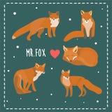 Fox在传染媒介的例证卡片 库存照片